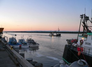 Naknek Co-op project to continue at King Salmon, Alaska