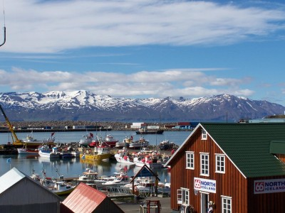 Wasabi Energy signs MOU on refurbishment of Husavik Kalina plant