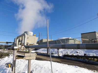 Private equity firm in talks to buy Calpine, largest U.S. geothermal operator