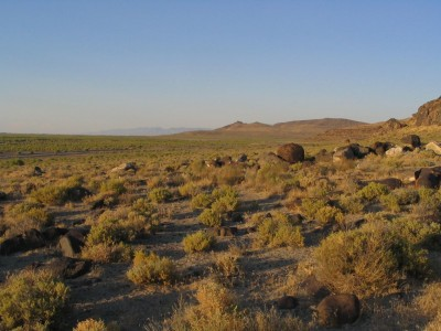 BLM in Nevada working on geothermal as part of Dixie Meadows restoration work
