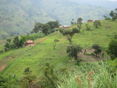 Private company secures three geothermal concessions in Uganda