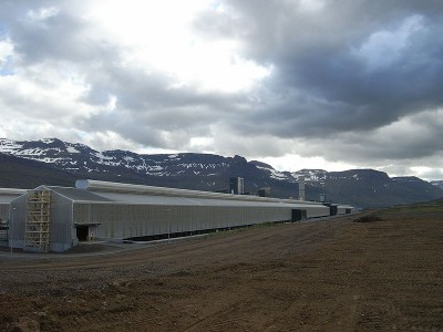 Opinion: Aluminium and electricity export might not what should matter for Iceland