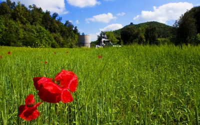 Enel seeking for innovation proposals on H2S abatement from geothermal operations