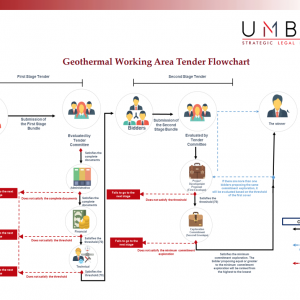 http://www.thinkgeoenergy.com/wp-content/uploads/2018/08/UMBRA_Indonesia_geothermal_tender_procedure-300x300.png