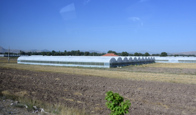 Local geothermal operators reluctant to sell heat to greenhouses in Germencik, Turkey