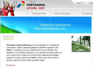 Pertamina plans increase on renewable energy business