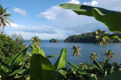 French Consortium plans to revive large project in Dominica