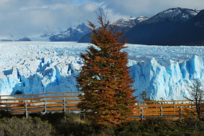 Argentina region of Mendoza opens 14 geothermal reserve areas