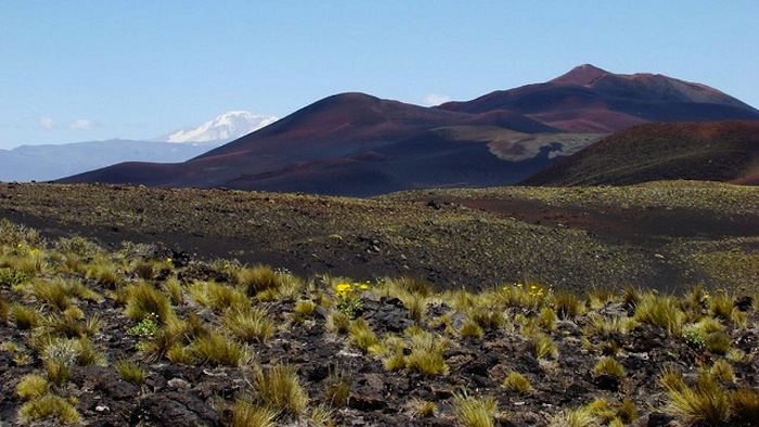 Tender for geothermal study in Domuyo, Nuequen, Argentina