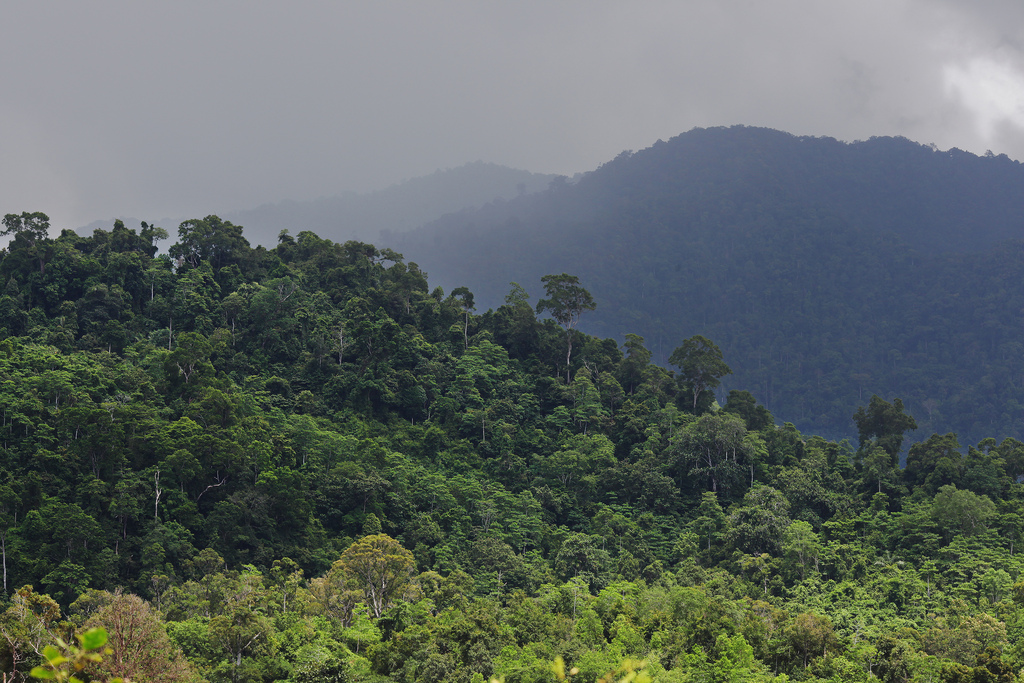 Turkish company seeks permits for preliminary geothermal studies in Aceh