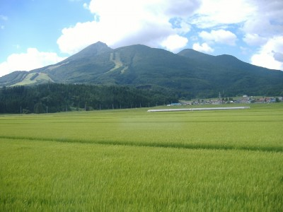Local opposition to geothermal projects in national parks in Japan