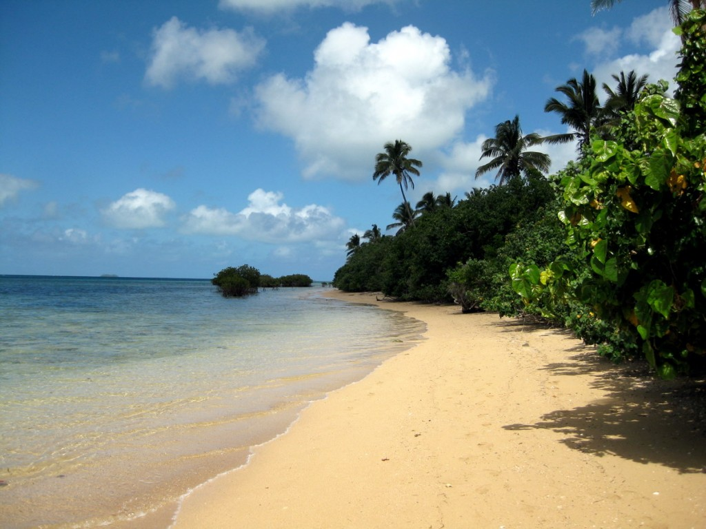 Renewables and geothermal option for Pacific Islands like Fiji and Vanuatu