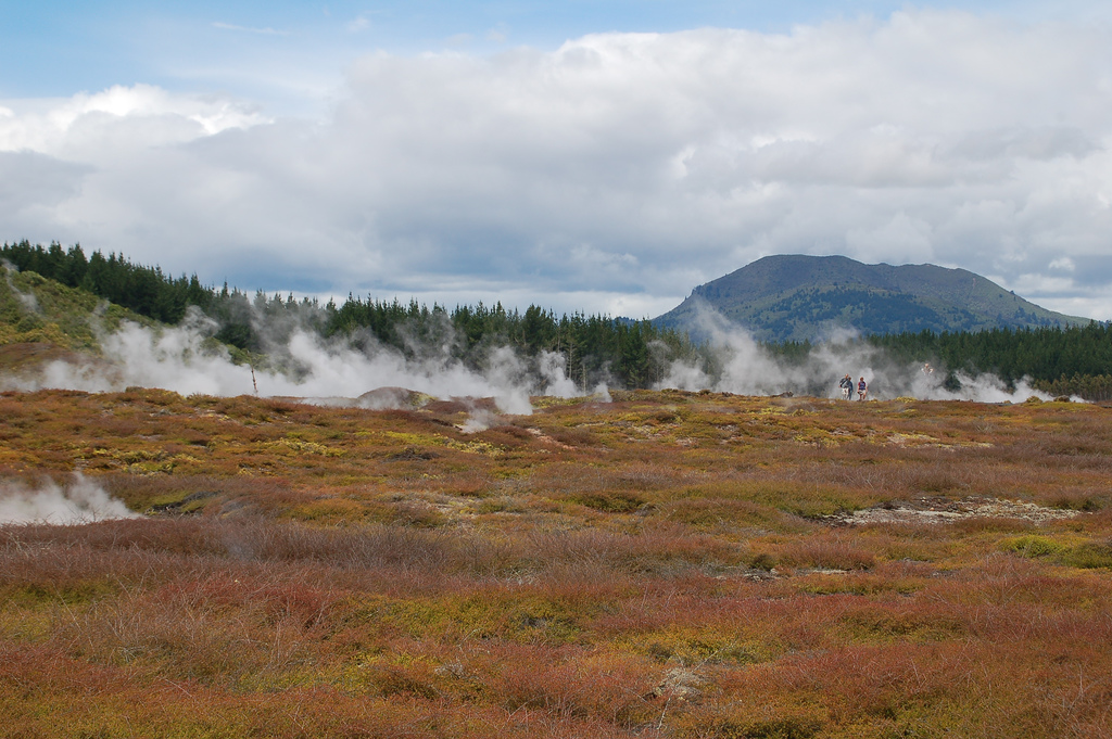 Geothermal site for sale at Taupo, New Zealand