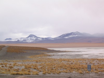 Talks on revitalization of of Laguna Colorada project in Bolivia