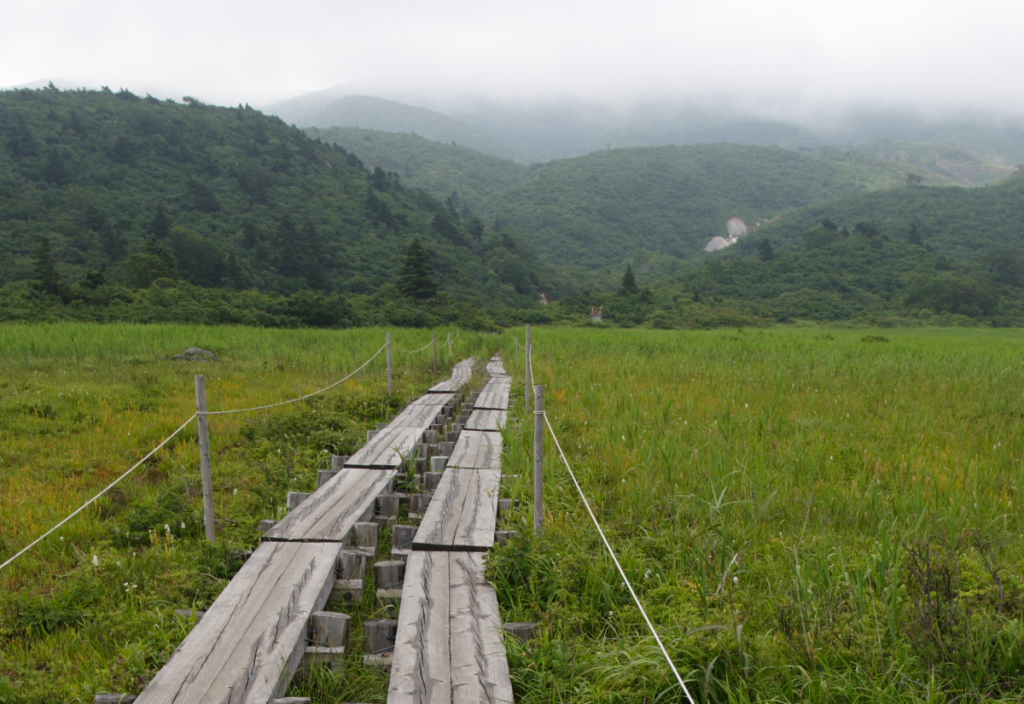 Sumitomo Forestry plans 2 MW geothermal plant in Japan