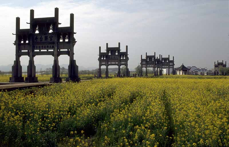 Low temperature field discovered in Anhui Province, China