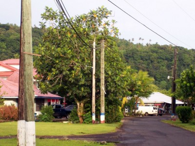 Geologists conducting initial geothermal study in American Samoa