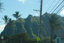 Hawaii_power_lines