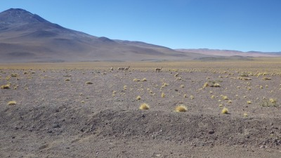 Interview: Ormat on its high-altitude geothermal project in Chile