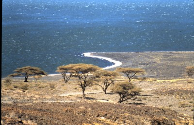 Turkana geothermal project in Kenya secures $1m grant from African Union