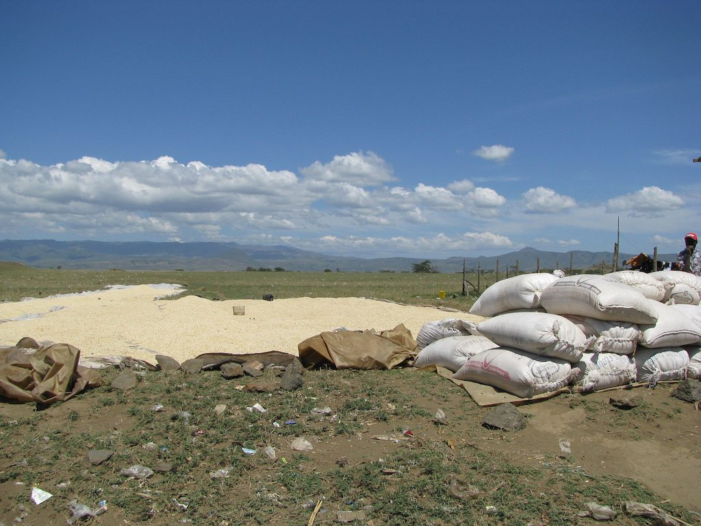 Project started on utilizing geothermal energy to dry grains in Kenya
