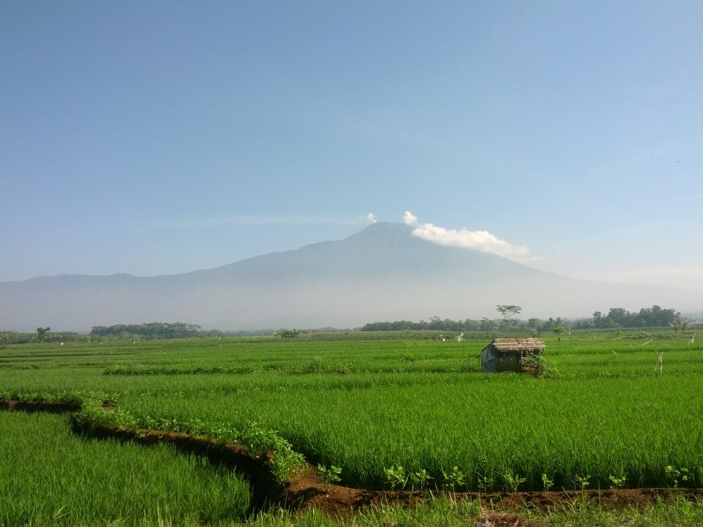 Indonesia expects an addition of 255 MW geothermal capacity in 2018