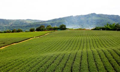 Small 30kW geothermal power unit breaks ground for further development in Taiwan