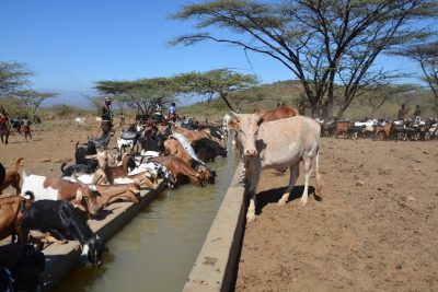 GDC supporting local communities near geothermal project development in Kenya