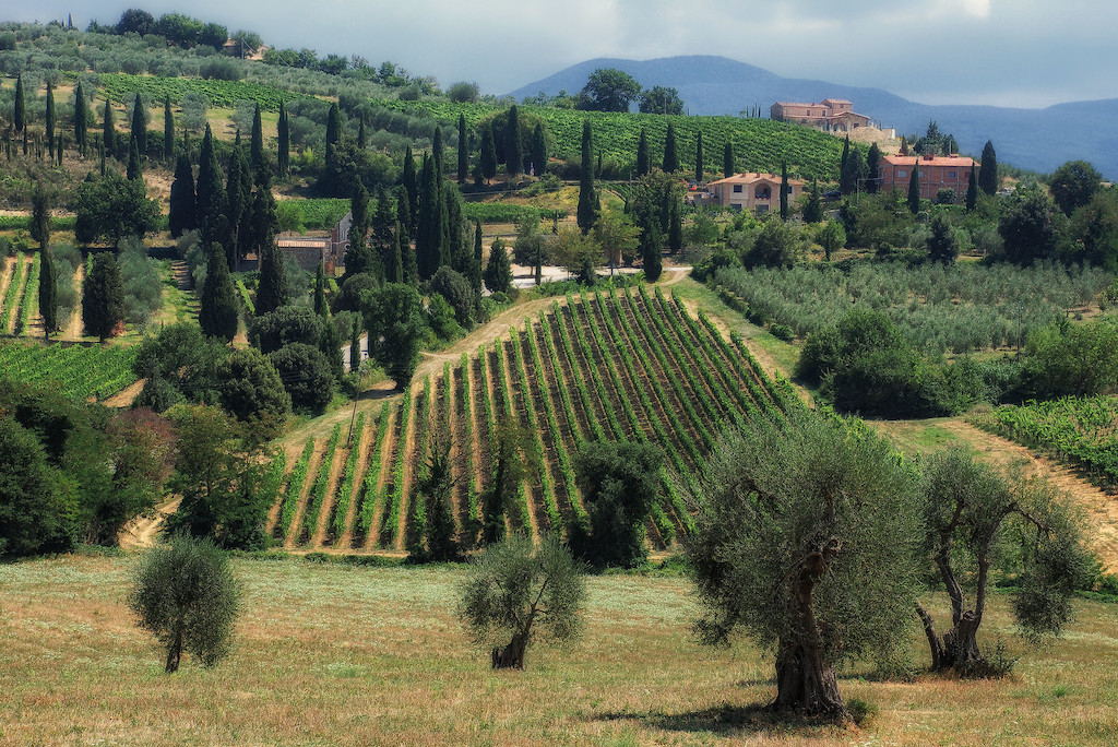 Perfume project combines the best of Tuscany – geothermal and wine